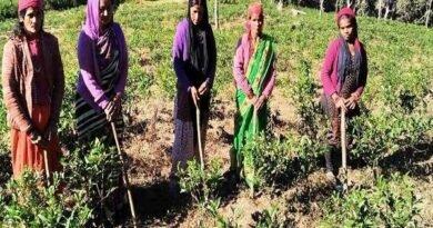 उत्तराखंड की ऐतिहासिक धरोहरों पर मंडराता अस्तित्व का खतरा